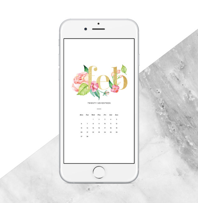 2017 free February Digital Calendar - phone background