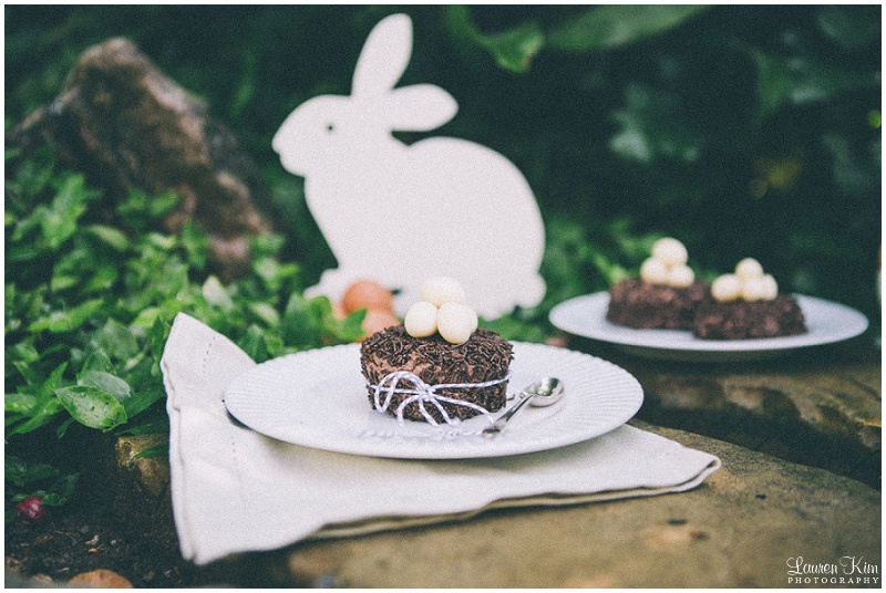 Easter Chocolate cake Nests