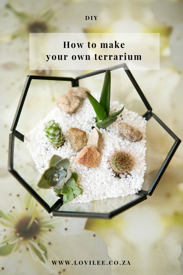 DIY terrarium instructions by Lauren Kim Photography