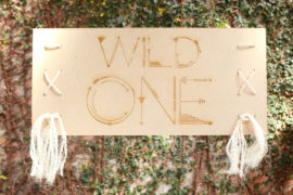 Fox birthday party 'Wild One'